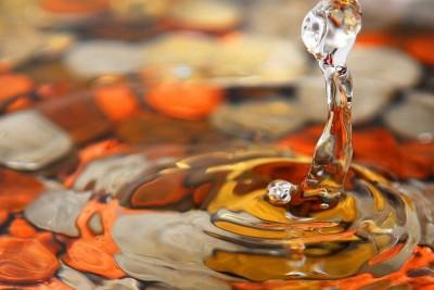 Detox in autunno: perché e cosa fare concretamente