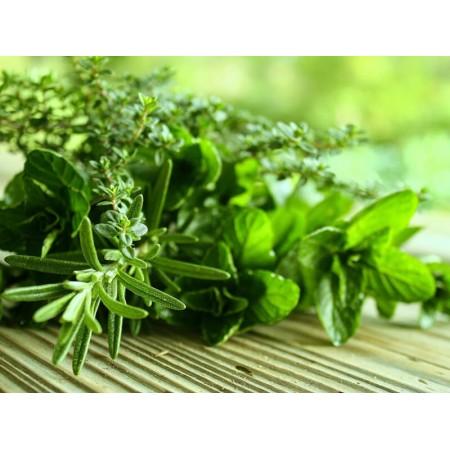Oli essenziali da erbe