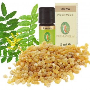 Olio essenziale di incenso - 5ml