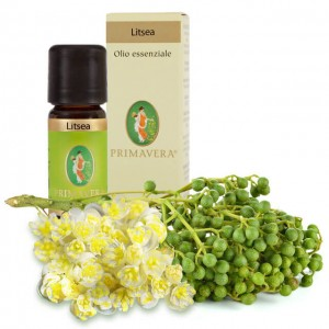 Litsea - olio essenziale - bio - 5ml