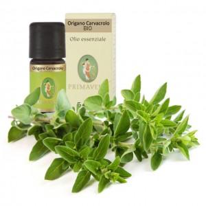 Origano carvacrolo - Olio essenziale - Bio - 5ml