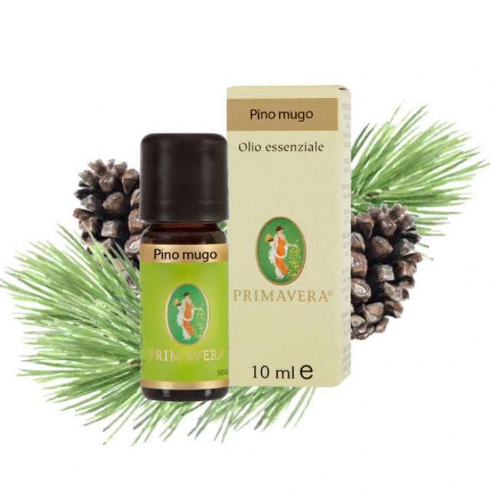 Pino mugo - Olio essenziale - 10ml