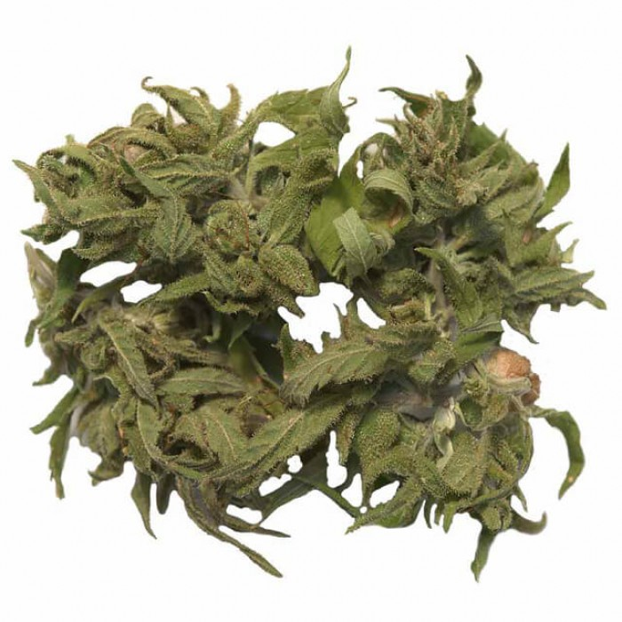 olio di cannabis prostatite