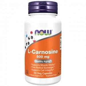 L-Carnosina - 500mg - 50 vcaps